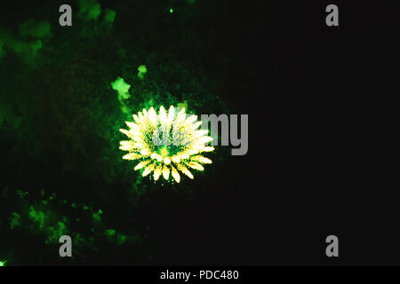 Best creative background with fireworks green flowers projected on the night sky. Colourful festival fireworks isolated in dark background. Christmas  - Stock Photo