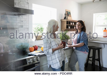 Smiling daughter and senior mother drinking tea and cooking, cutting vegetables in kitchen - Stock Photo