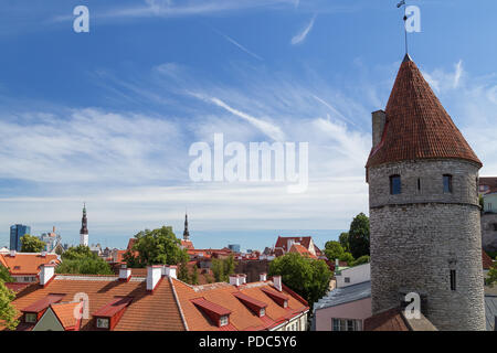 Old buildings and medieval towers at the Old Town in Tallinn, Estonia, viewed from above on a sunny day in the summer. Copy space. - Stock Photo