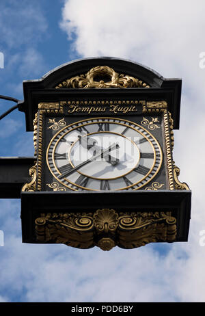 hanging clock outside the 1908 chelsea old town hall, chelsea, london, england, with latin inscription tempus fugit, or time flies - Stock Photo