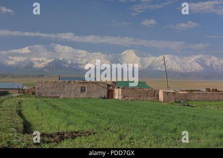 7,134 metre Lenin Peak and the High Pamirs rise over Sary Mogul, Kyrgyzstan - Stock Photo