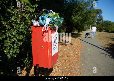 A dog poo bin overflowing with dog poo bags on one of the hottest days of summer 2018 - Stock Photo