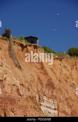Garden Shed Perched Precariously on the Edge of a Sandstone Sea Cliff from Coastal Erosion. Sidmouth, East Devon, UK. Jurassic Coast. - Stock Photo