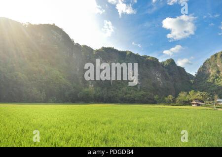 Beautiful limestone in Rammang Rammang park near Makassar, South Sulawesi, Indonesia - Stock Photo