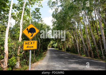 Road sign warning of cassowaries crossing the road, Daintree National Park, Cape Tribulation, Far North Queensland, FNQ, QLD, Australia - Stock Photo
