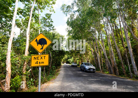 Oncoming traffic and Road sign warning of cassowaries crossing the road, Daintree National Park, Cape Tribulation, Far North Queensland, FNQ, QLD, Aus - Stock Photo