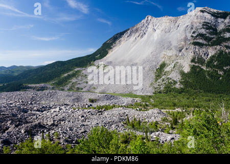 The Frank Slide was a rockslide that buried part of the mining town of Frank, Alberta, Canada at 4:10 am on April 29, 1903. Over 82 million tonnes of  - Stock Photo