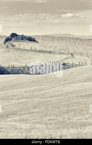 Stylized view of the abandoned old house in the hills of Tuscany with cypresses on the road - Stock Photo