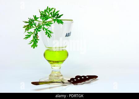 Glas Absinth mit Wermutkraut und Absinthloeffel - Stock Photo