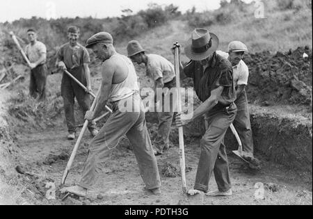 168 SLNSW 51188 Gangs of men on relief work during the depression - Stock Photo