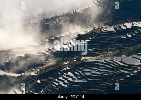 Rice terraces in the mountainous region of Yuanyang, in southern Yunnan, China. The terraces are filled with water during the winter months - Stock Photo