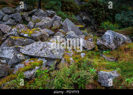Rocks which have been quarried from a very old quarry in Blacktop Woods, Cults, Aberdeenshire. - Stock Photo