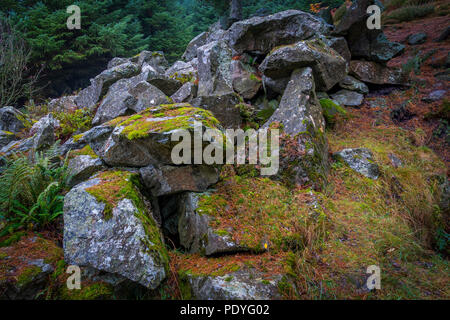 An old granite quarry at Blacktop, Aberdeenshire. - Stock Photo