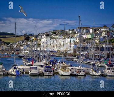 GB - DEVONSHIRE: Picturesque Brixham harbour and village - Stock Photo