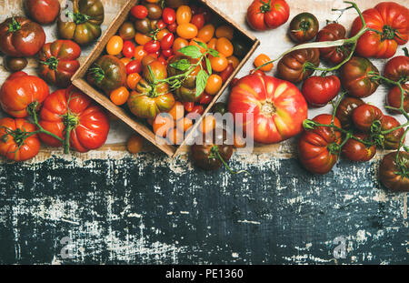 Flat -lay of fresh colorful ripe tomatoes over rustic background - Stock Photo