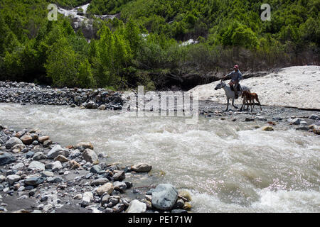 Man on a horse crossing a river in Caucasus mountains in Svaneti, Georgia