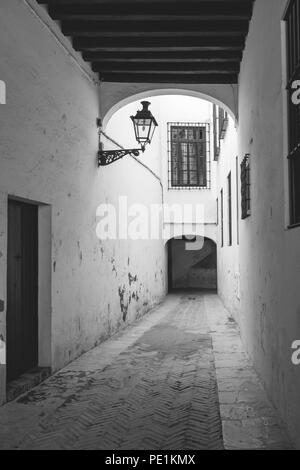 Monochrome of a street in the Jewish quarter (Juderia) in the Santa Cruz district in the Spanish city of Seville, Andalusia, Spain