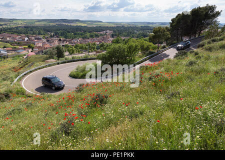 Peñafiel, Spain: A car winds its way up the road to Peñafiel Castle through a wildflower super bloom. Fields of poppies sprouted in the region after a - Stock Photo