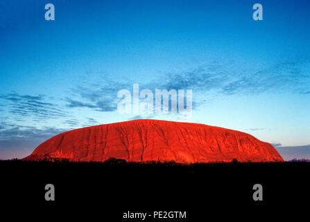 Sunrise on Uluru causes the terracotta-colored surface of this world-famous sandstone monolith to appear in flaming red light amid the outback scrublands of the Northern Territory in Australia. Also known as Ayers Rock, the massive landmark rises about 350 meters (1,148 feet) ) above ground and covers 8.6 square kilometers (3.32 square miles) in Uluru-Kata Tjuta National Park. It is a sacred place for the area's indigenous aboriginal tribe, the Anangu, who named the ancient rock Uluru, meaning 'Earth Mother.' - Stock Photo