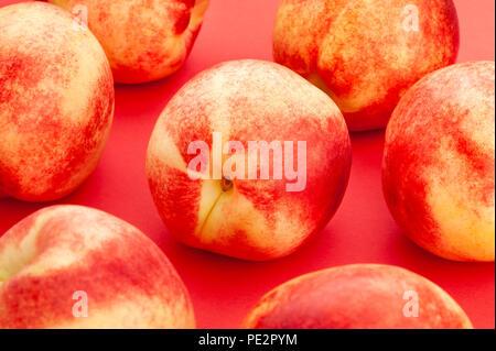 white nectarine closeup on red background - Stock Photo