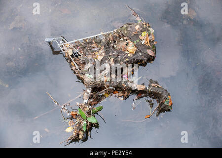 Dumped shopping trolley in River Brent, near Brent Reservoir, also known as Welsh harp Reservoir, Brent, London, United Kingdom - Stock Photo