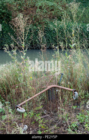 Dumped supermarket trolley, River Brent, near Brent Reservoir, Brent, London, United Kingdom - Stock Photo