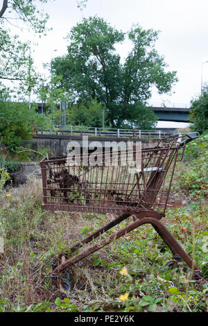 Dumped shopping trolley, Brent River, near Brent Reservoir, Brent, London, United Kingdom - Stock Photo