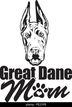 Great Dane Breed Pet Puppy Isolated Head Face - Stock Photo