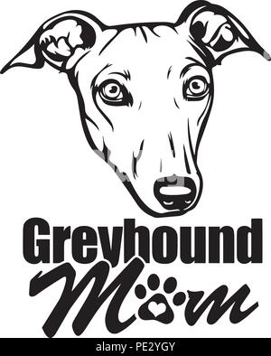 Greyhound Dog Breed Pet Puppy Isolated Head Face - Stock Photo