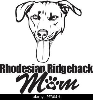 Rhodesian Ridgeback Dog Breed Pet Puppy Isolated Head Face - Stock Photo