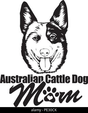 Australian Cattle Dog Breed Pet Puppy Isolated Head Face - Stock Photo