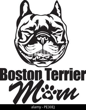 Boston Terrier Bostie Dog Breed Pet Puppy Isolated Head Face - Stock Photo