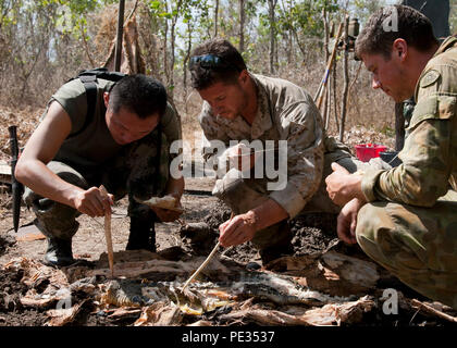 People's Liberation Army LT Mingming Liu, left, U.S. Marine Corps Cpl. Caleb Lyon with 1st Battalion, 4th Marine Regiment, Marine Rotational Force - Darwin, a Stockbridge, Georgia native, center, and Australian Army LT Sam McLean gather crocodile meat during Exercise Kowari 15 Sept. 4 in the Daly River region, Northern Territory, Australia. Kowari is a trilateral environmental survival training opportunity hosted by Australia and includes forces from Australia, China and the U.S. simultaneously. (U.S. Marine Corps photo by SSgt. Jose O. Nava/Released) - Stock Photo