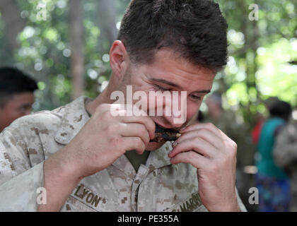U.S. Marine Corps Cpl. Caleb Lyon, a Stockbridge, Georgia native, eats a magpie goose during Exercise Kowari 15 Sept. 2 in the Daly River region, Northern Territory, Australia. Kowari is a trilateral environmental survival training opportunity hosted by Australia and includes forces from Australia, China and the U.S. simultaneously. (U.S. Marine Corps photo by SSgt. Jose O. Nava/Released) - Stock Photo
