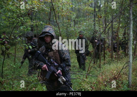 Marines with Charlie Co. 1st Battalion, 25th Marine Regiment, 4th Marine Division, Marine Forces Reserve, and members of the Canadian Army Royal Hamilton Light Infantry, Wentworth Regiment, conduct patrols at Evangola State Park, New York, during exercise Lake Effect, Sept. 12, 2015. The Canadians divided up among the Marine platoons to strengthen the interoperability among the services and learn new training techniques and tactics. (U.S. Marine Corps Photo By Cpl. J. Gage Karwick/Released) - Stock Photo