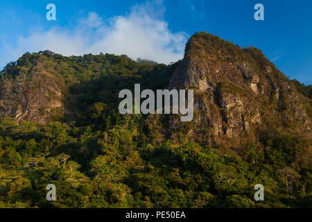 Early morning light on the cloudforest and Cerro la Cruz (right) in Altos de Campana national park, Cordillera Central, Republic of Panama. - Stock Photo