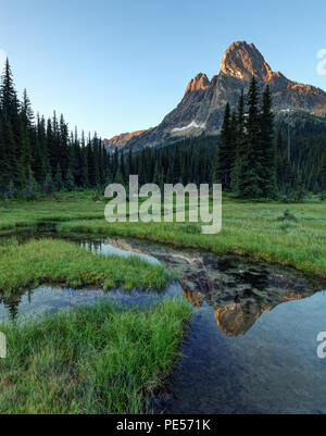 Liberty Bell Mountain reflected in pond in grassy meadow, Washington Pass, North Cascades, Chelan County, Washington State - Stock Photo