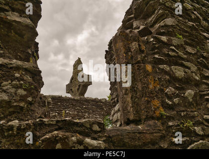 The Irish monastery ruin Mainistir Bhuithe in the county Louth - Stock Photo