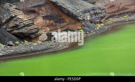 LANZAROTE, CANARY ISLANDS, SPAIN, EUROPE: Detail of  El Charco de los Clicos or The Green Lagoon near Yaiza. - Stock Photo