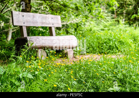 A old and worn out wooden chair by a trail in the woods - Stock Photo