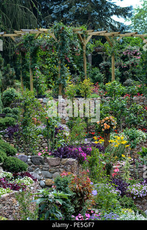 Terraced garden and pergola with colourful plants and shrubs in summer bloom. - Stock Photo