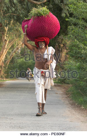 JAWAIBANDH, RAJASTHAN INDIA - JUL 10, 2017:  rural man from Rebari commuinity wearing traditional turban and casual, this community know as Farmer And - Stock Photo