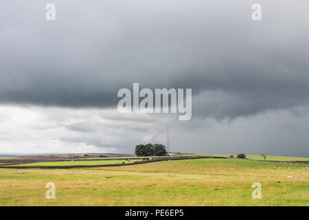 Teesdale, County Durham, UK.  Monday 13th August 2018.  UK Weather.  Stormy skies over Teesdale in County Durham as slow moving torrential rain showers affect Northern England this afternoon. Credit: David Forster/Alamy Live News - Stock Photo