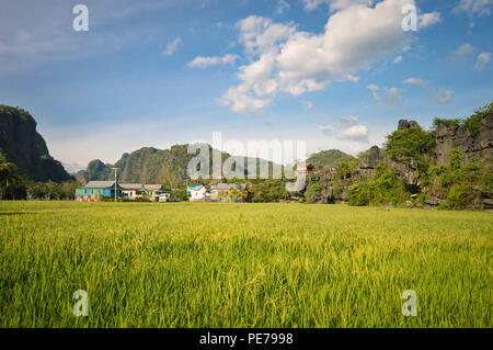 Beautiful stone forest knows as karsts set amid rice fields in Rammang-Rammang park near Makassar, South Sulawesi, Indonesia - Stock Photo