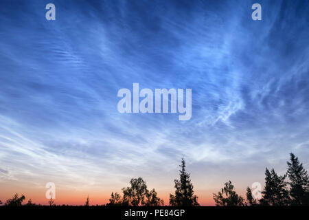 Night cloudy sky over deep forest. Abstract outdoor scene at sunset. South Karelia, Russia - Stock Photo