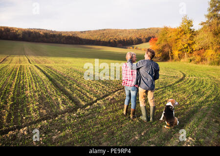 Senior couple with dog on a walk in an autumn nature. - Stock Photo