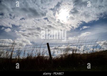 barrier, paling, railing, rail, bar, hurdle, enclosure wall, hedge, hedgerow, windbreak, groyne, partition barricade, stockade, palisade, rampart, pro - Stock Photo