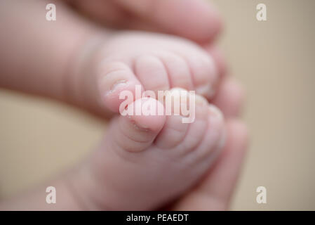 Feet of a newborn baby in the hands of parents. Happy Family oncept. Mum and Dad hug their baby's legs. - Stock Photo
