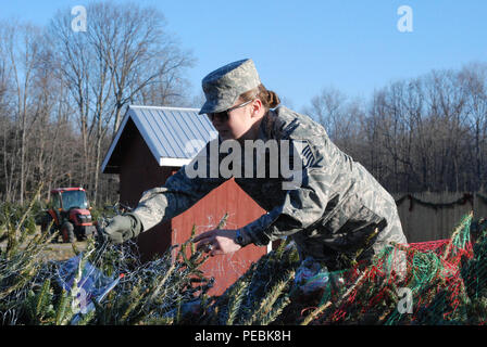 """New York Air National Guard Master Sgt. Jennifer Dippo helps load Christmas Trees bound for military forces at Ellms Tree Farm Nov. 30 as part of the loading and shipment of holiday trees for troops. Twenty members of the New York Army and Air National Guard volunteered their time to help load about 125 donated Christmas trees at Ellms Tree Farm in Charlton, N.Y., in support of their delivery this holiday season as part of """"Trees for Troops."""" The Soldiers, part of the 42nd Infantry Division Headquarters and Airmen, from the 109th Airlift Wing, were present to show their support of fellow servi - Stock Photo"""