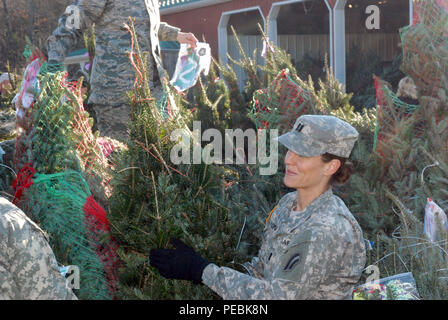 """New York Army National Guard Capt. Amanda Ponn  helps load Christmas trees bound for military forces at Ellms Tree Farm Nov. 30 as part of the shipment of holiday trees for troops. Twenty members of the New York Army and Air National Guard volunteered their time to help load about 125 donated Christmas Trees at Ellms Tree Farm in Charlton, N.Y., in support of their delivery this holiday season as part of """"Trees for Troops."""" The Soldiers, part of the 42nd Infantry Division Headquarters, and Airmen, from the 109th Airlift Wing, were present to show their support of fellow service members current - Stock Photo"""